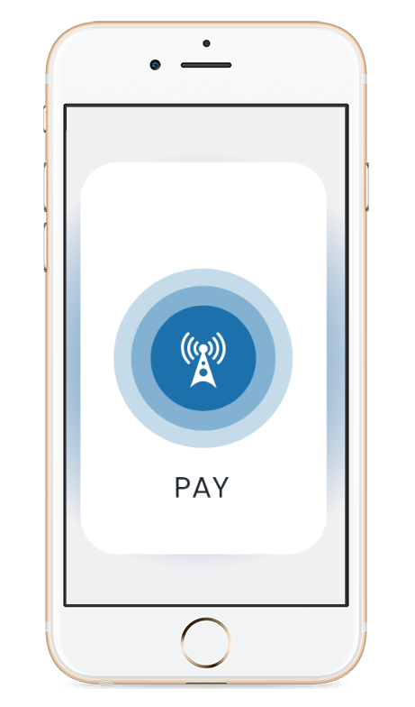 Picture of generic payment interface in phone to show DV Pass solution